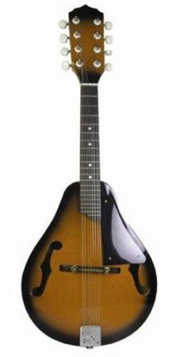 First Act MG950 Mandolin by First Act. $99.99. Amazon.com                The First Act MG950 Classic Eight-String Mandolin features a classic A-style body with an arched spruce top for bright and ringing tones, and a maple back and sides for maximum projection. The traditional F-hole design, combined with the easy playing rosewood fingerboard with smooth nickel plated frets, makes this a great instrument for country, bluegrass, roots music, rock and more. This mandolin also ...