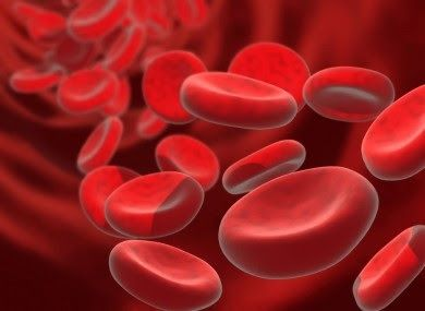 Latest Amazing Facts: Lab-Grown Blood Stem Cells
