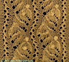 Nupp Berries and Lace Leaves stitch detail ...  found on Knittingfool ...  photo provided by Elaine Joann Lyons ... Knittingfool has a substantial database of over 200 lace stitches that can be searched by subset like edging, etc. You will also find many other varieties of knit stitches.