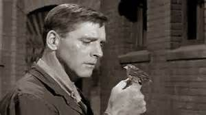 """Birdman of Alcatraz is a 1962 film starring Burt Lancaster and directed by John Frankenheimer. It is a largely a version of the life of Robert Stroud, a federal prison inmate known as the """"Birdman of Alcatraz"""" because of his life with birds. In spite of the title, much of the action is set at Leavenworth Prison, where Stroud was jailed with his birds. When moved to Alcatraz he was not allowed to keep any pets."""