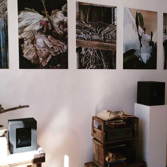 Master of Design graduate exhibition by @georgiawilson3 #georgiawilson…