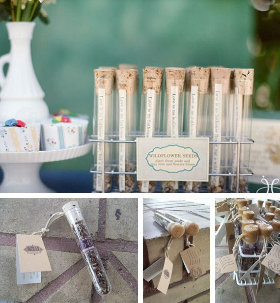 Cute favors - plastic test tubes with seeds, tea, hot choc, sprinkles, etc (strip of paper with sweet sayings)