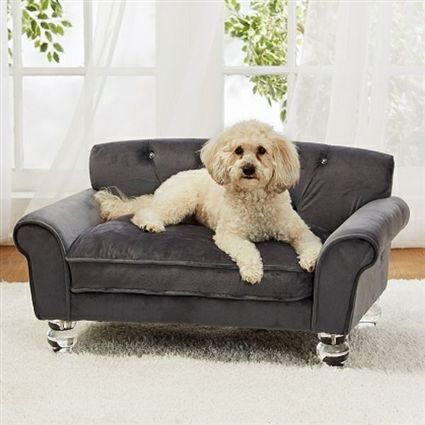 A Luxurious Velvet Sofa Bed For Dogs Up To 30 Lbs
