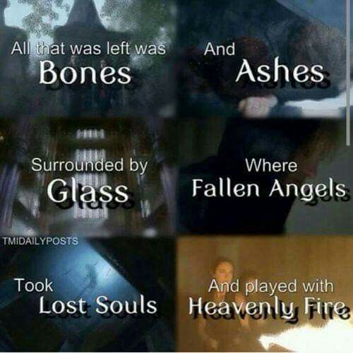 The Mortal Instruments // TMI these books are next on my list to read