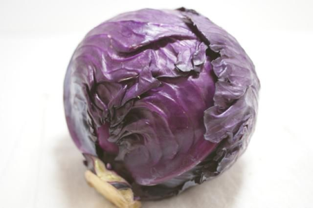 Learn the 6 Common Types of Cabbages