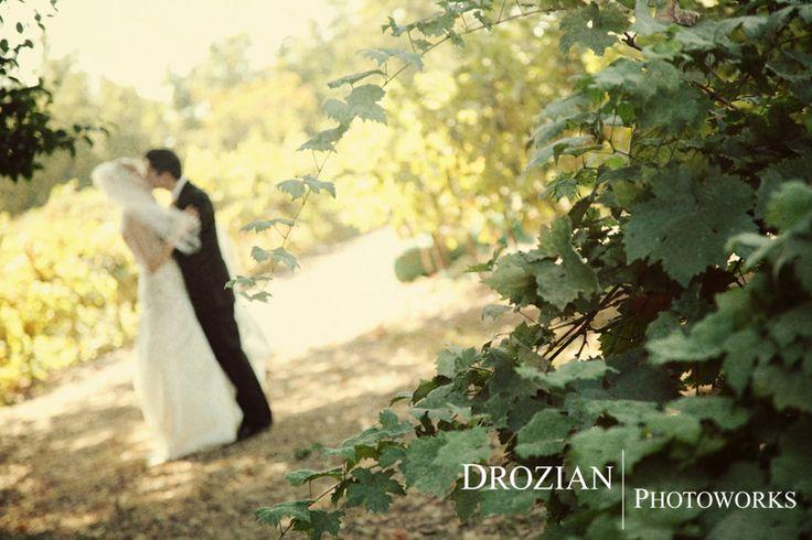 Gale vineyard wedding chico area wedding venue gale for Chico wedding venues