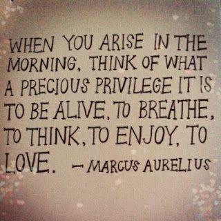 Precious Privilege