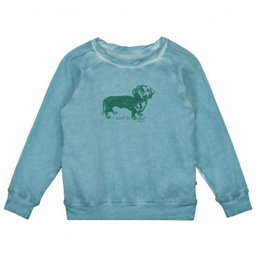 Lichtblauwe t-shirt/sweater met groene hondjesprint - Tumble 'n Dry - Mister Monkey and Misses Butterfly