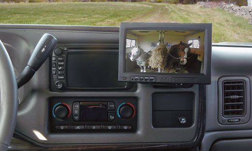 Horse trailer viewing system. This is honestly the best idea ever..
