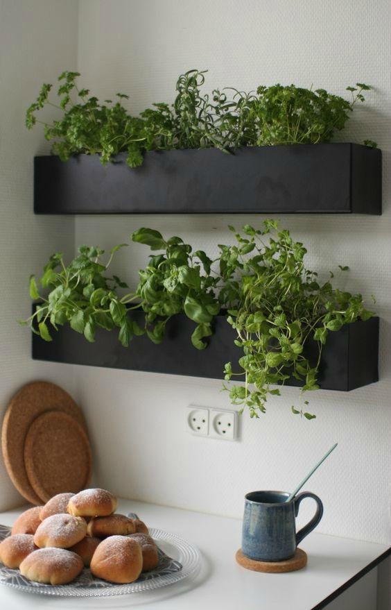 Planten in de keuken: een kruidenrek