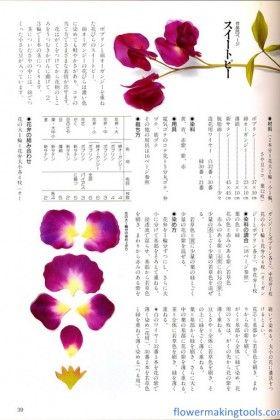 Sweet Pea Blossom