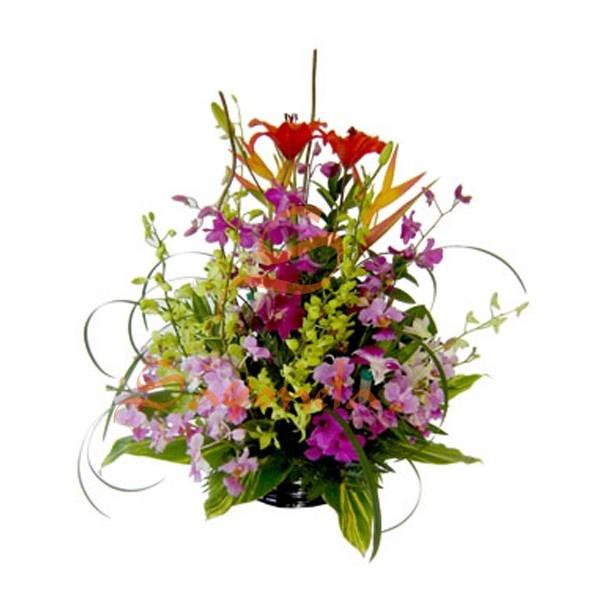 Arreglo compuesto por:        2 Varas de Lirio del Japón      6 Orquídeas Hawaianas      7 Varas de Dendrobium (diferente color)      2 Opalos      Follaje hojas de color      Base en vidrio
