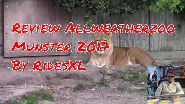 Review Allweatherzoo Munster 2017