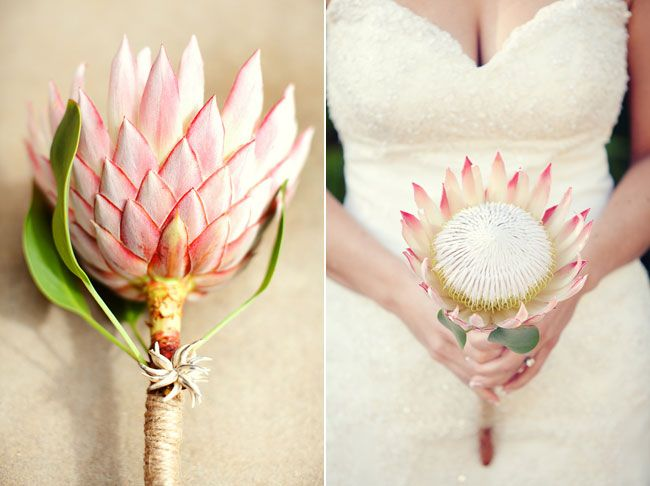 Simple king protea bridal bouquet