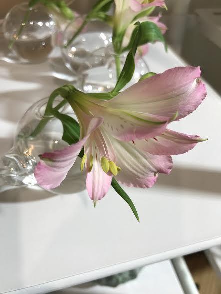 Serax - oryginalne wazony, które podkreślają piękno kwiatów.