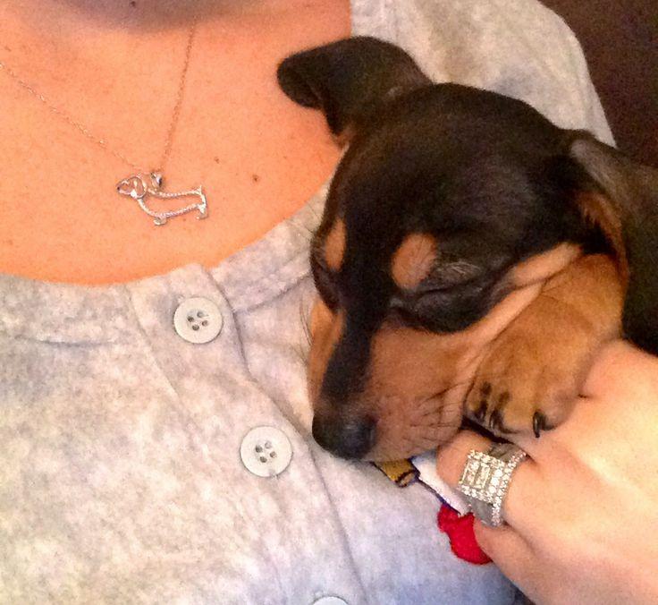 weenie dog and weenie dog necklace.