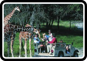 Texas Family Vacations - Big Fun on Small Change!