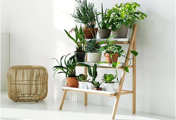 Hickey and Dobson: Kekklia indoor plant holders