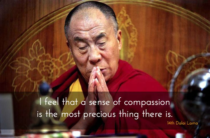 A Sense of Compassion ~ 14th Dalai Lama http://justdharma.com/s/2unbq  I feel that a sense of compassion is the most precious thing there is.  – 14th Dalai Lama  source: https://twitter.com/DalaiLama/