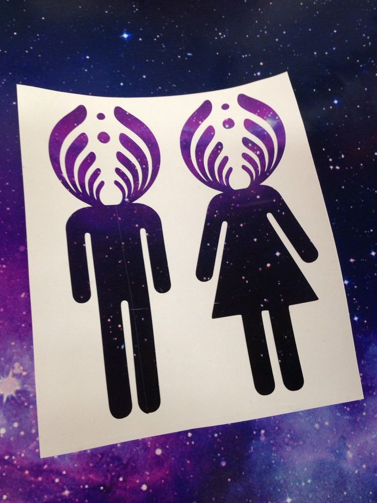 Bassnectar Basshead Girl and Guy Decal Bassnectar Sticker Galaxy Print by CrijimadeDesigns on Etsy