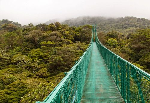 Best 44 Monteverde Cloud Forest Costa Rica Ideas On
