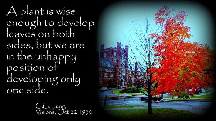 Citaten Jung : Best carl jung images on pinterest citaten