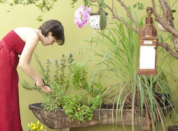 Horta em casa. Pode ser em vaso, em caixotes, em apartamento, em jardim vertical, em garrafa PET, em pouco espaço. Confira nossas reportagens sobre como fazer e cultivar uma horta em casa. Plante e colha seus próprios temperos, ervas, folhas e até legumes!