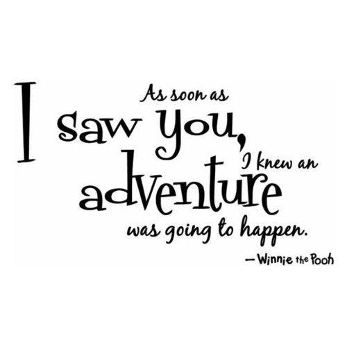 - Winnie the Pooh