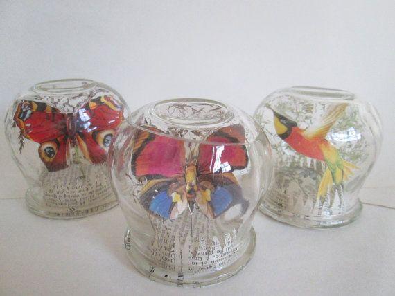 papillon sous cloche de verre miniature cabinet de. Black Bedroom Furniture Sets. Home Design Ideas