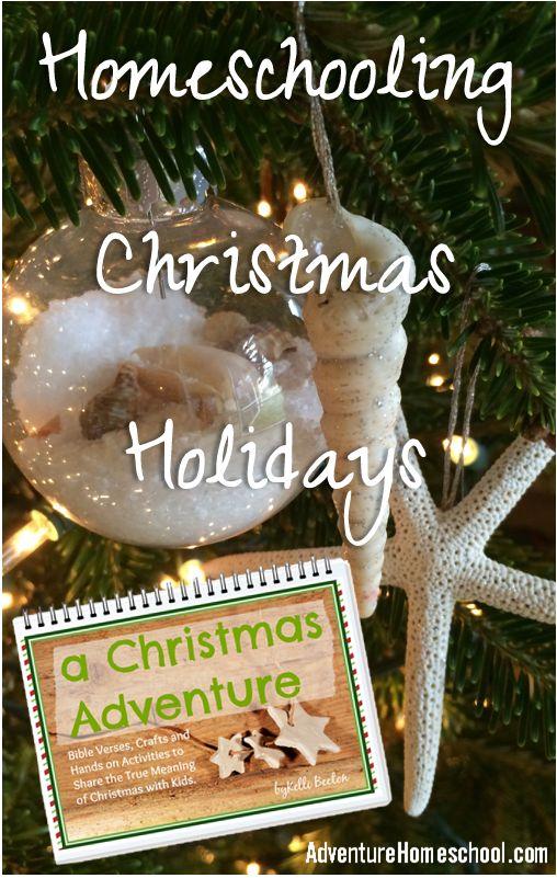 Homeschooling Christmas Holidays Successfully
