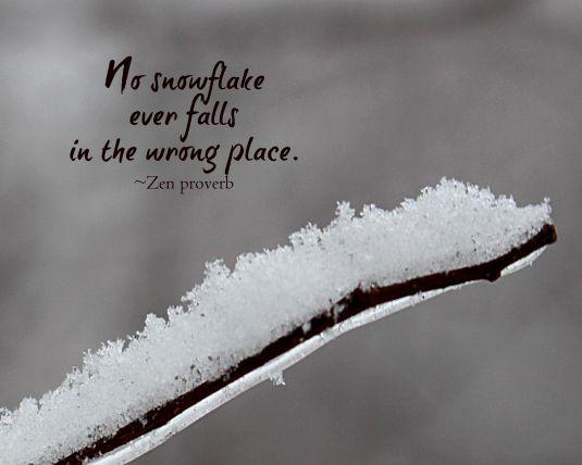 Zen proverb about a snowflake.