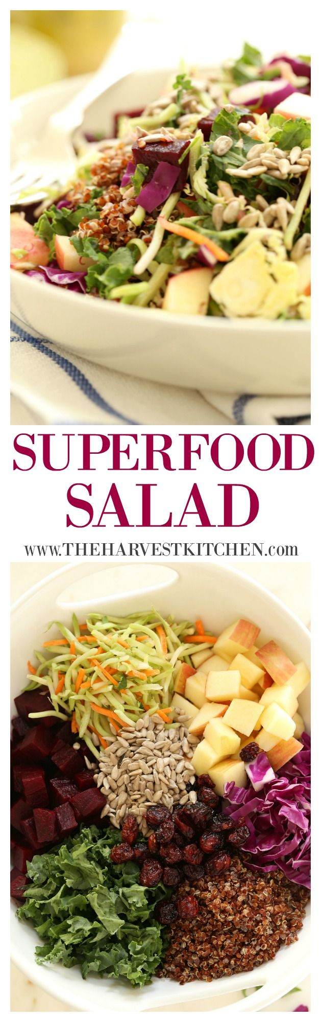 This Superfood Salad is loaded with curly kale, crunchy broccoli slaw, cabbage, shaved brussel sprouts, apples and sunflower seeds, as well as protein-dense quinoa, small bites of beets and chewy dried cranberries. It's all tossed in a delicious honey lime salad dressing.  Healthy recipe @theharvestkitchen.com
