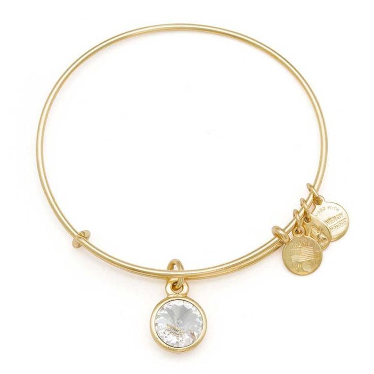 ALEX AND ANI April Charm Bangle A12EB243RG | T.H. Baker Family Jewellers - Gold or Silver