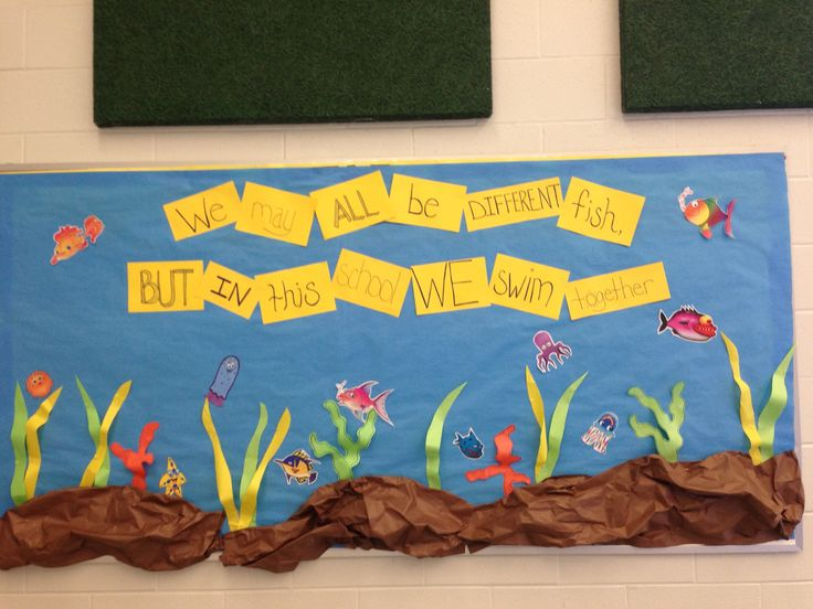 fish bulletin board bulletin board ideas pinterest