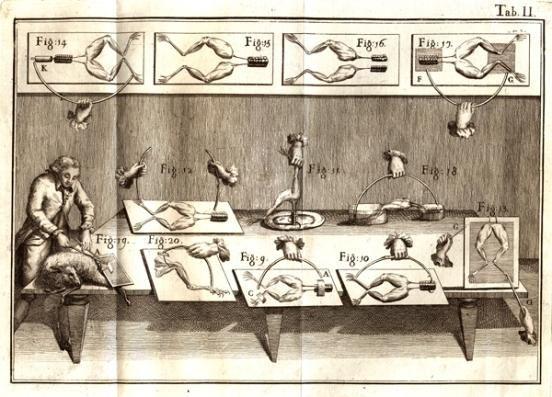 Luigi Galvani y las ancas de rana «  Galvanotecnia Puchades