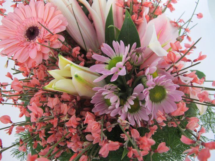 mazzi, fiori, gerbere, crisantemi, piante