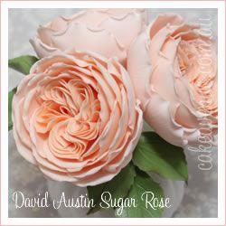 David Austin Rose Wedding Cake Copyright Studiocake cakepins.com