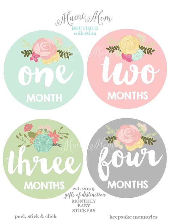 GIFT+Baby+Girl+Month+Stickers+Monthly+Baby+by+MaineMomBoutique