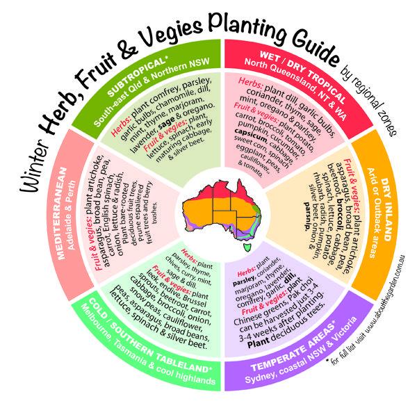 Winter planting guide for Herbs, Fruit & Vegies