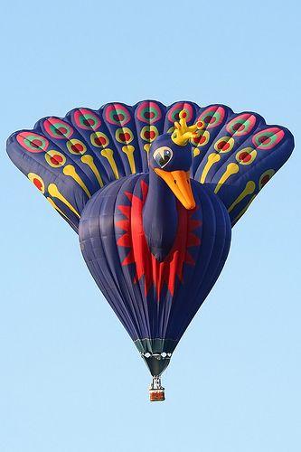 Peacock hot air balloon - photo by Bert Visser, via Flickr;  at Barneveld, The Netherlands
