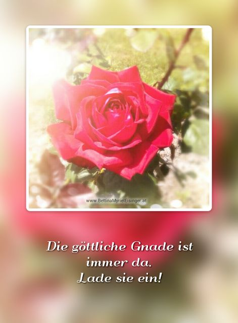 Bettina Myriel Eisinger: ♥Affirmation/Impuls...28.8.2016♥