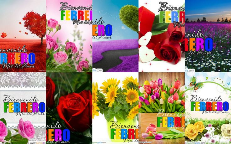 Bienvenido Febrero - Mes del Amor - Comparte | BANCO DE IMAGENES GRATIS Bienvenido Febrero - Mes del Amor - Comparte         |          BANCO DE IMAGENES GRATIS