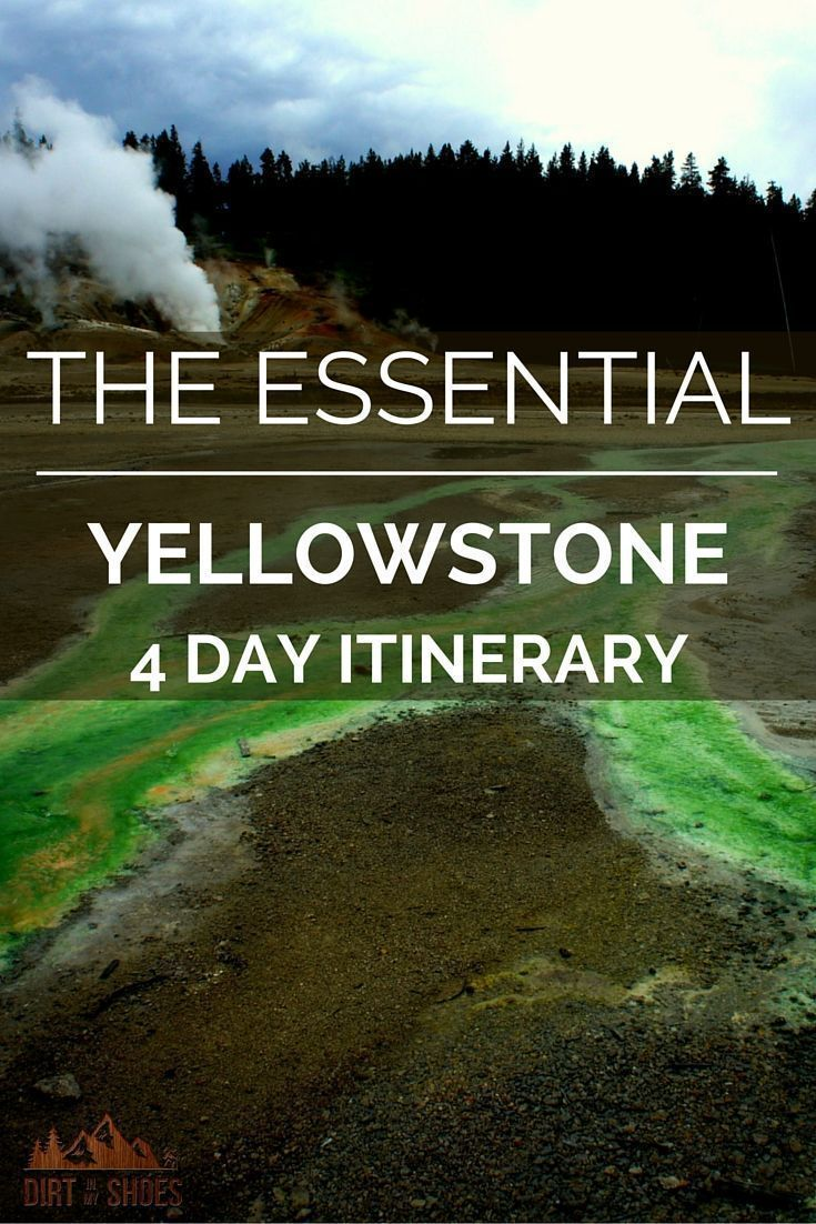yellowstone national park men Are you planning a trip to yellowstone national park with your family  men's novelty shirts girls' novelty tops & tees boys' novelty tops & tees.