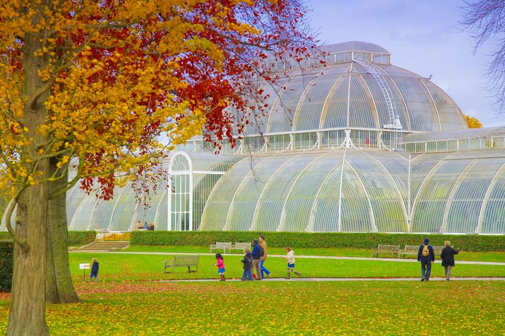 The Palm House at Kew Gardens in Autumn. Photo: ©London On View/Pawel Libera.