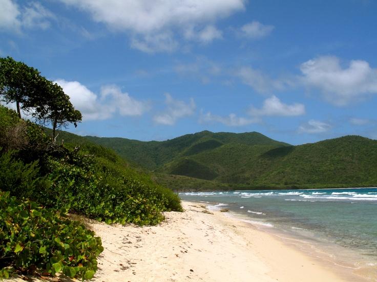 Reef Bay St. John