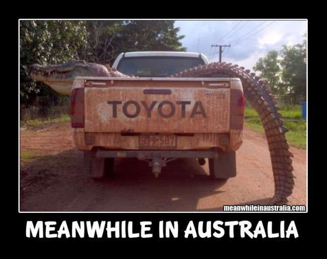 Hilarious Meanwhile In Australia Imagest