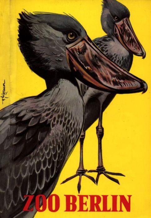 Shoebill Storks in Zoo Berlin Poster