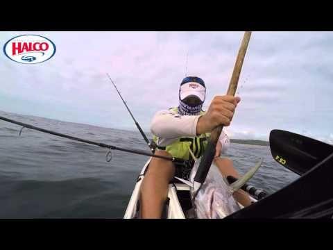A tuna, a whale shark and a wipeout - YouTube