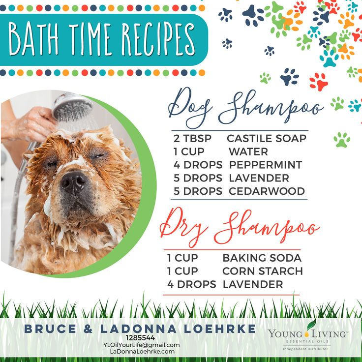 26) Bath Time Recipes ~ Dog Shampoo and Dry Shampoo. Curious how you can use Young Living Essential Oils with your dogs! We will be sharing info to help you get started over the next two weeks. **Check the disclaimer posted in this album as we are not medical professionals. www.LaDonnaLoehrke.com (Oil Your Life Essentially) Sponsor/Enroller #1285544