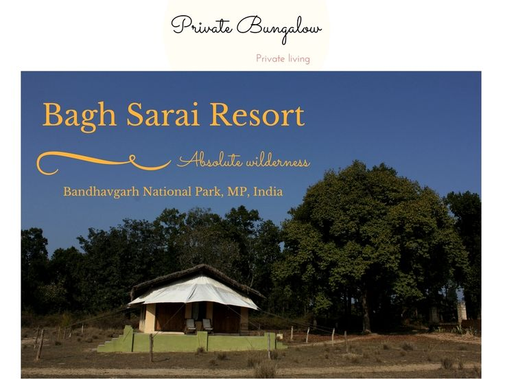 Bagh Sarai Resorts absolute wilderness, surrounded by Jungle and pivotal to the Jungle jeep safaris. Bandhavgarh National Park
